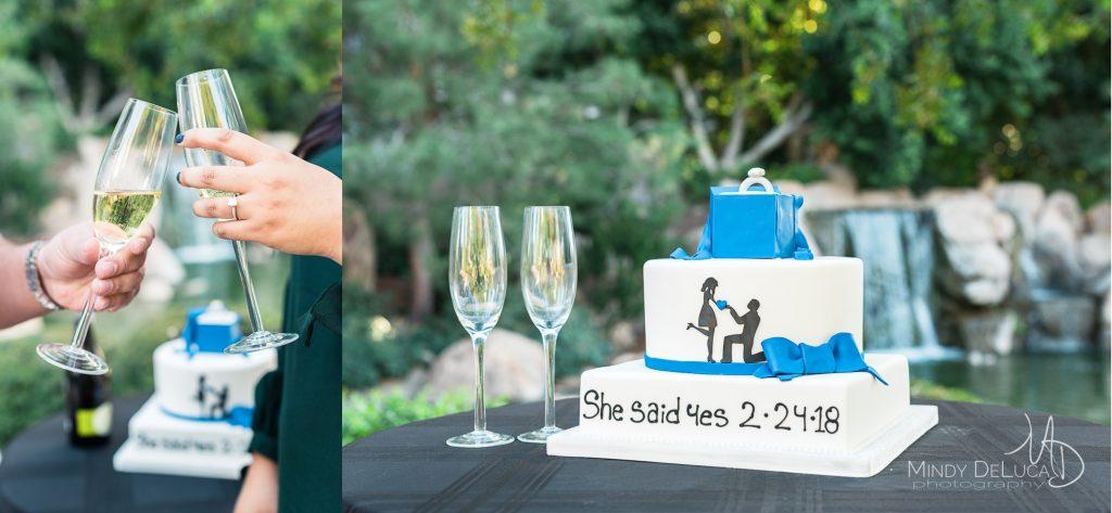 she said yes cake